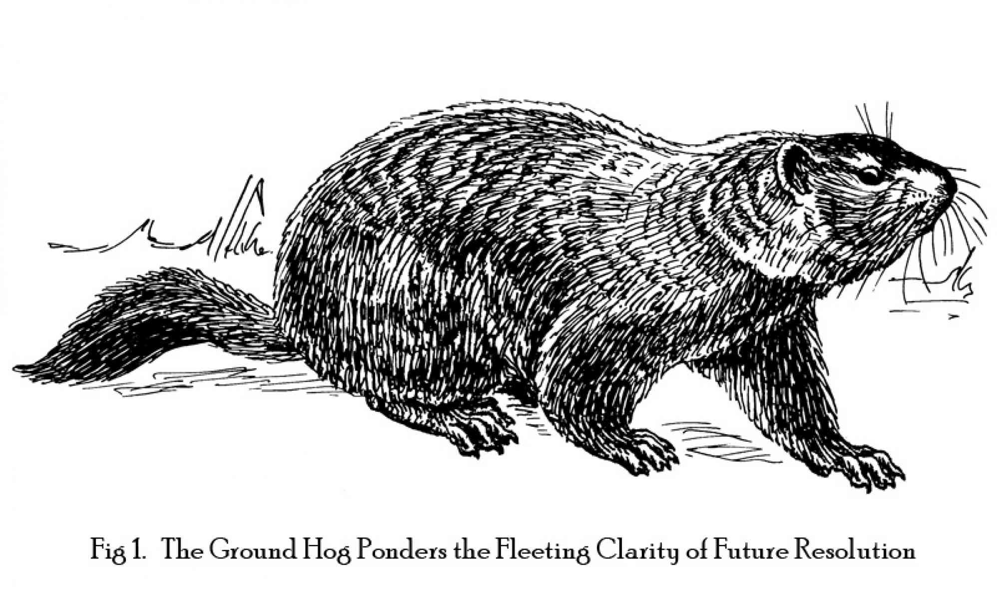 """Groundhog by Pearson Scott Foreman"""