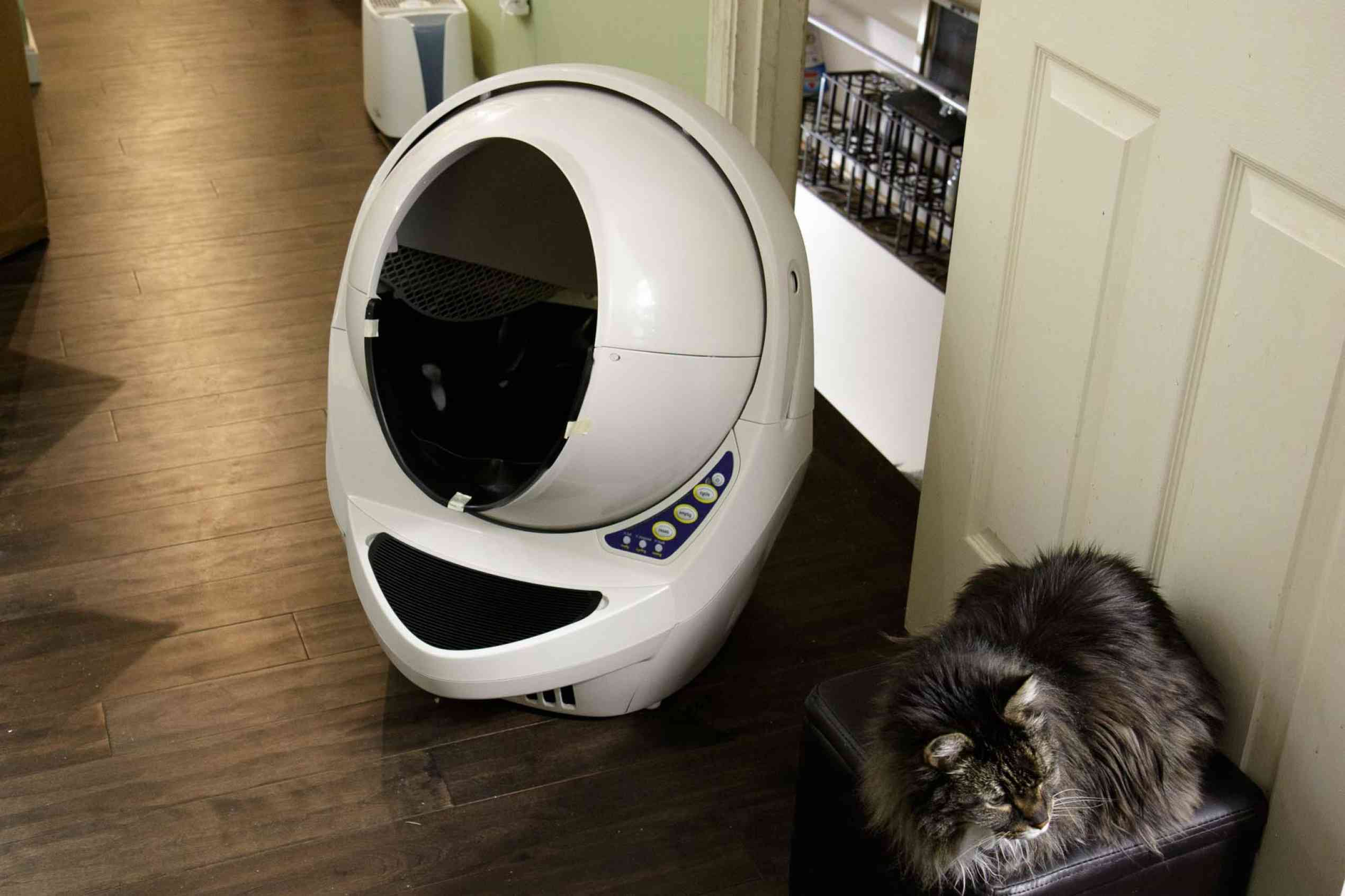 Litter Robot III Open Air