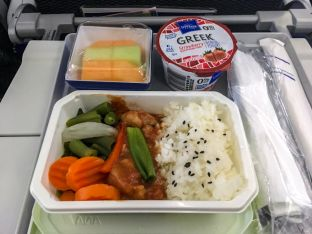All Nippon Airlines Breakfast Bento