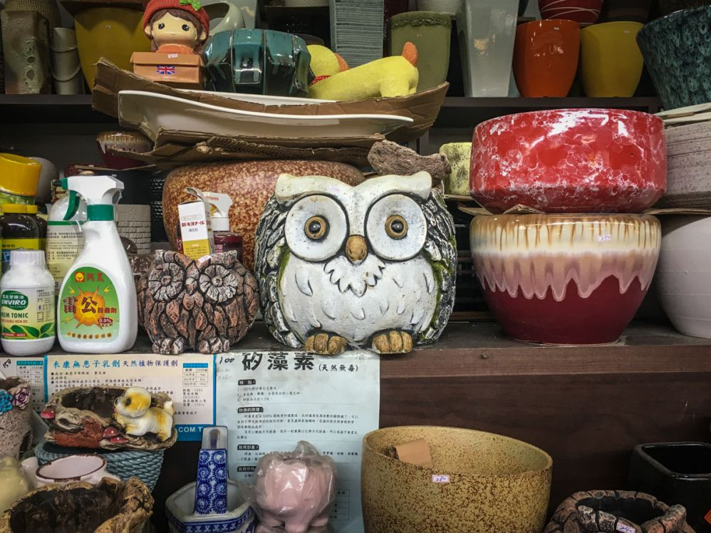 """Owl Pot at Taichung Flower Market"""