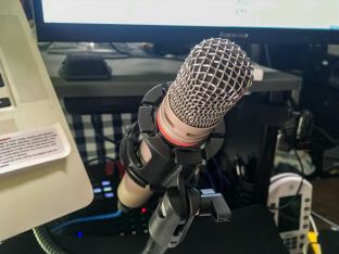 Microphone Mount