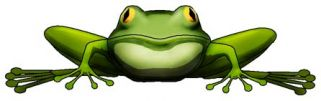 """froggy"""