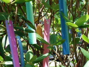 Tanabata, Plus Groundhog Day Resolutions Review Day 5