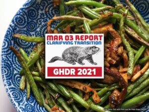 GHDR 2021 March Report: Defining Transition